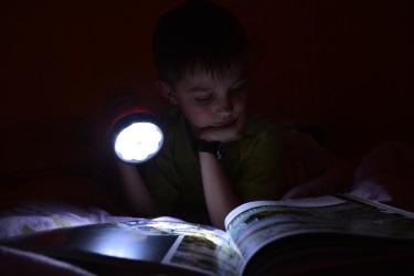 Трапезина Дарья. 'Не перестану я читать...'. Победитель конкурса в номинации 'Человек читающий' (возрастная группа 14-21 год).